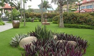 Bài trí sân vườn theo hướng nhà