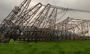 Phó Thủ tướng chỉ đạo xác định nguyên nhân đổ cột điện đường dây 500kV