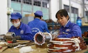 Bắc Trung Bộ và duyên hải miền Trung có số doanh nghiệp tăng nhiều nhất