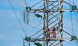 6 tháng, hơn 400 vụ ăn cắp điện với thủ đoạn tinh vi