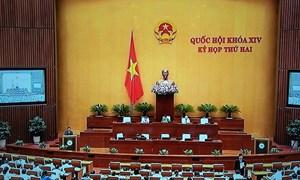 Nhiều đại biểu Quốc hội tán thành Luật quản lý, sử dụng tài sản Nhà nước sửa đổi