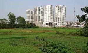 Chuyển mục đích sử dụng 18,2 ha đất trồng lúa sang đất phi nông nghiệp