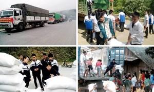 Bộ Tài chính xuất cấp hỗ trợ gạo cho 3 tỉnh