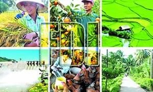 Quý I/2017, trình Chính phủ Nghị định thu hút FDI nông nghiệp