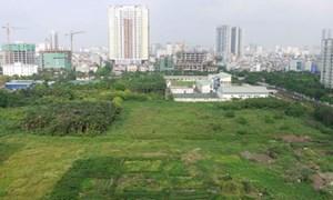 Cho phép Hà Nội chuyển 61,8 ha đất trồng lúa sang đất phi nông nghiệp