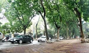 Hà Nội sẽ chỉ định thầu tư vấn quy hoạch hệ thống gara ngầm