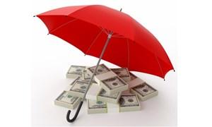 Hoạt động bao thanh toán của tổ chức tín dụng, chi nhánh ngân hàng nước ngoài?