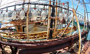 Điều tra rõ vụ việc đóng tàu cá kém chất lượng