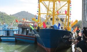 Rà soát, kiểm tra chất lượng tàu cá đóng theo Nghị định số 67/2014/NĐ-CP