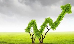 Tăng trưởng xanh: Thời cơ và thách thức