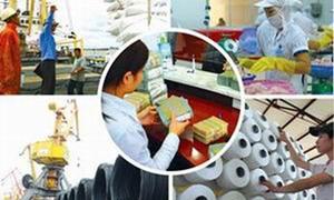 Cổ phần hóa doanh nghiệp nhà nước: Nhà đầu tư tranh thủ tìm hàng