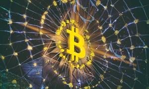 Năm 2018, Bitcoin có thể chạm mốc 60.000 USD rồi lao dốc