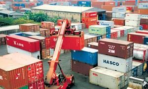 Thanh toán 50% làm khó doanh nghiệp vận tải biển