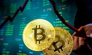 Khi những người giàu nhất thế giới chỉ trích nhau vì bitcoin