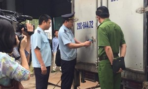 Cảnh báo lá Khát độc gấp 500 lần so với ma túy nhập lậu vào Việt Nam