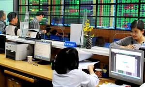 Công ty chứng khoán nào dẫn đầu thị phần môi giới cổ phiếu trên HNX quý II/2018?