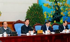 Khẩn trương thực hiện kế hoạch năm 2013 ngay từ đầu xuân mới