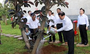 Phó Thủ tướng Vũ Văn Ninh làm việc tại tỉnh Gia Lai