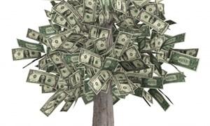 Loại bỏ bất minh trong đầu tư ủy thác