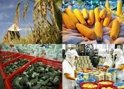 7 lĩnh vực nông nghiệp thực hiện thí điểm cơ chế hải quan một cửa