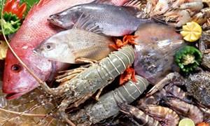 Ưu đãi thuế để phát triển thủy sản