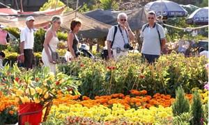 34% khách du lịch quốc tế quay lại Việt Nam