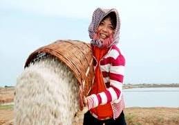 Dạy nghề cho lao động nông thôn