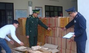 Hải quan Quảng Ninh: 7 tháng phát hiện, bắt giữ 338 vụ buôn lậu