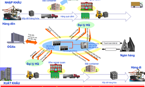 Vận hành thử hệ thống VNACCS