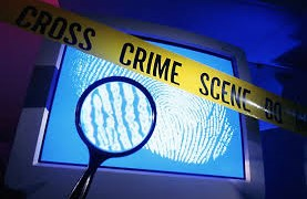 Cơ quan Hải quan với công tác chống tội phạm internet