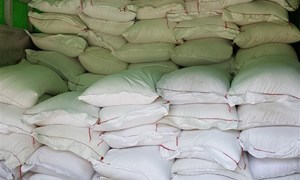 Bắt giữ vụ xuất lậu 22 tấn gạo tại Cao Bằng