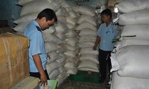 Đội Kiểm soát Hải quan An Giang bắt giữ 7 tấn đường lậu