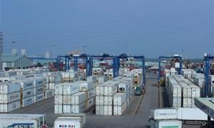 Khởi tố vụ nhập khẩu 6 container thịt trâu gian lận thuế lớn