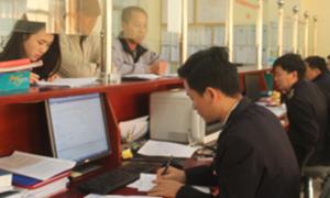 Hải quan Quảng Ninh thu ngân sách vượt 300 tỷ đồng
