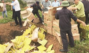 Hải quan Quảng Ninh giám sát chặt thực phẩm nhập khẩu