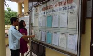 Phát hiện, xử lý 8.032 vụ vi phạm hành chính trong lĩnh vực hải quan