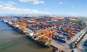 Sẵn sàng kết nối ở cảng biển lớn nhất miền Bắc