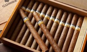Thu giữ hơn 850 điếu xì gà vận chuyển trái phép qua Nội Bài