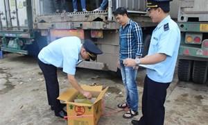 Lạng Sơn: 2 tháng kiểm tra, xử lý 828 vụ buôn lậu, gian lận thương mại