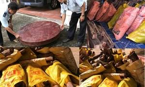 Bắt giữ hơn 4,3 tấn gỗ trắc vận chuyển trái phép qua biên giới