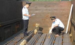 Hải quan giám sát chặt mặt hàng thép