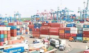 Bán đấu giá hàng chục container hàng nhập khẩu tại Cát Lái