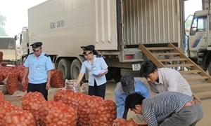 Hải quan và Bộ Nông nghiệp và Phát triển nông thôn phối hợp kiểm soát thực phẩm nhập khẩu