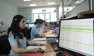 Tháng 8, Hải quan Hải Phòng thu ngân sách gần 4.780 tỷ đồng