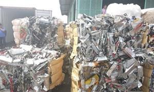 Nhiều hãng tàu liên quan đến hàng trăm container phế liệu tồn đọng