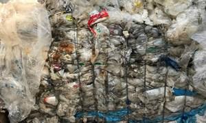 Hải quan TP. Hồ Chí Minh: Kiên quyết xử lý phế liệu tồn đọng