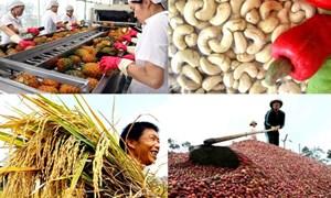 Xuất khẩu nông sản 2019: Xây mốc mới - 43 tỷ USD