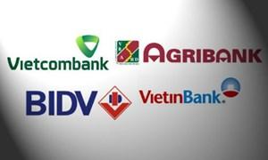 Cuối năm 2020 sẽ bổ sung vốn cho các ngân hàng thương mại nhà nước
