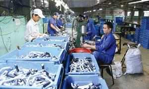 Hỗ trợ doanh nghiệp nhỏ và vừa Việt Nam tiếp cận vốn tín dụng phát triển sản xuất, kinh doanh