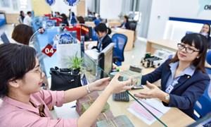 Tác động của cấu trúc sở hữu đến hiệu quả hoạt động của các ngân hàng thương mại Việt Nam